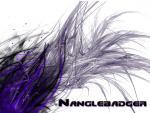 Nanglebadger's Photo